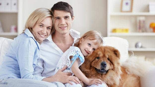 Wills & Trusts dog-young-family Direct Wills Lincolnshire